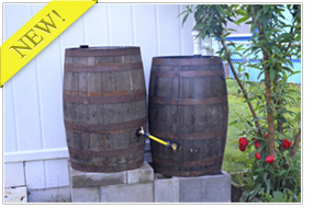 Oak Whiskey Rain Barrels
